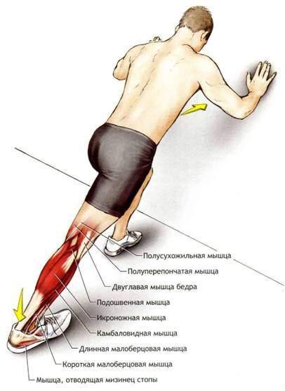 Упражнение на растяжку (ноги) 6