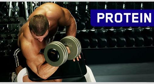 Мифы о протеине