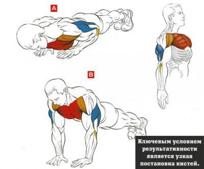 Отжимания от пола узким хватом (трицепс - упражнения)