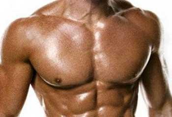 Мышцы груди структура