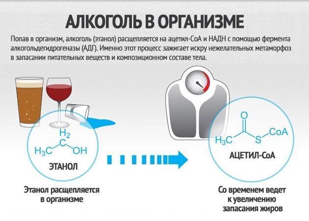 Алкоголь и похудение 2
