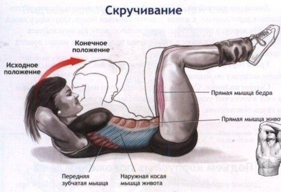 Скручивание на гимнастической скамье 3