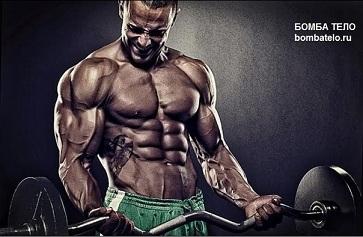 Как подсушиться не теряя мышечной массы