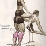 Упражнение ослик на икры