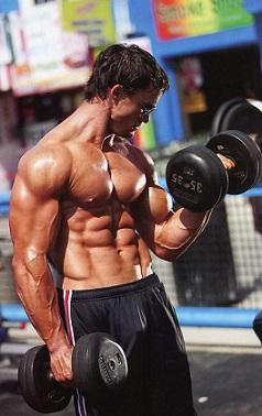 Мышцы для жизни миф или реальность 3