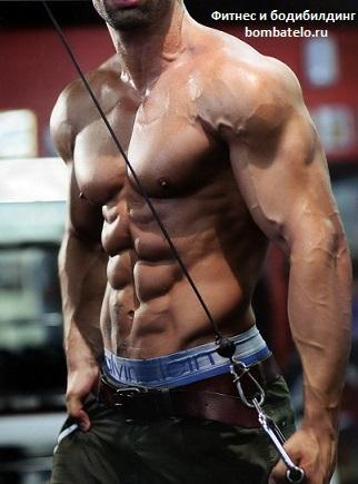 Почему не видно рельефа мышц10 главных ошибок