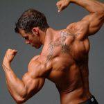 Тренировка плеч на массу: 16 главных правил