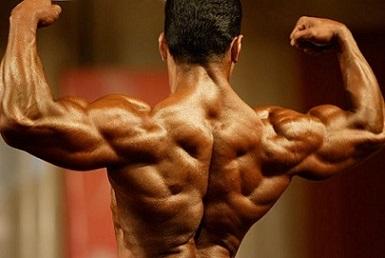 Тренировка мышц спины 8 главных ошибок 2