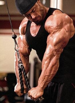 Тренировка мышц рук 8 важных советов 2