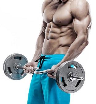 Тренировка мышц рук 8 важных советов 3