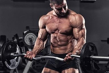 Тренировка мышц рук 8 важных советов 5