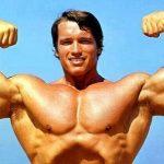Тренировки Арнольда Шварценеггера: советы для бицепса и трицепса