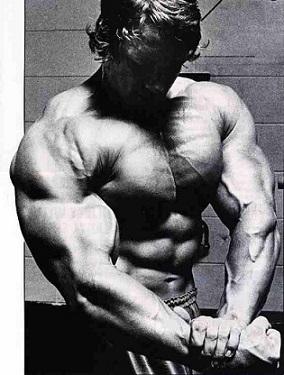 Тренировки Арнольда Шварценеггера советы для груди и спины 2