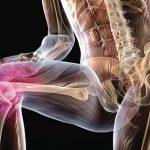 Как укрепить кости: 3 главных способа