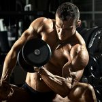 Как часто тренировать одну группу мышц?