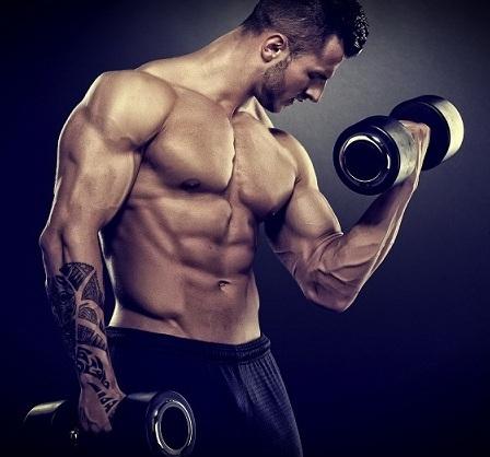 Тренировка мышц по дням недели