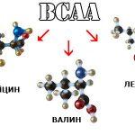 Как правильно выбрать аминокислоты ВСАА