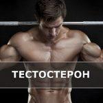 Что снижает тестостерон
