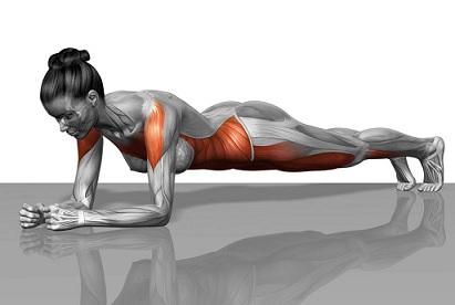 Упражнения для мышц кора - Фитнес для умных людей