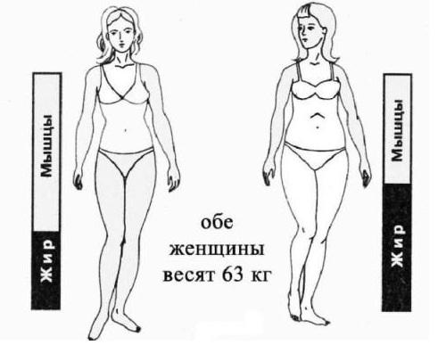 Правильное питание для похудения результаты v