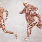 Гормон лептин и ожирение