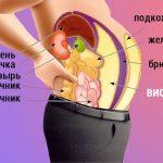 Как убрать висцеральный жир