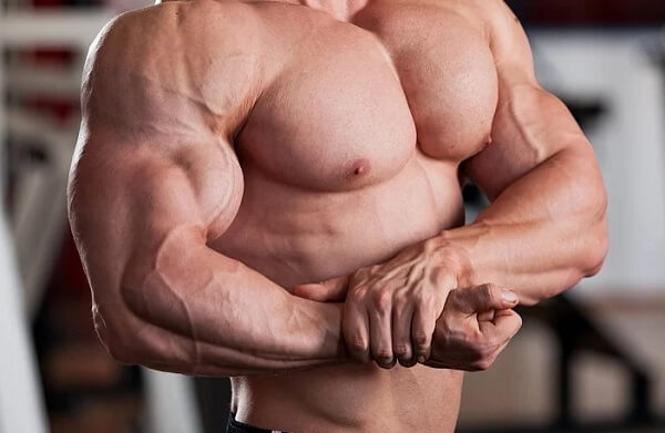 Набор мышечной массы: ТОП причины остановки роста