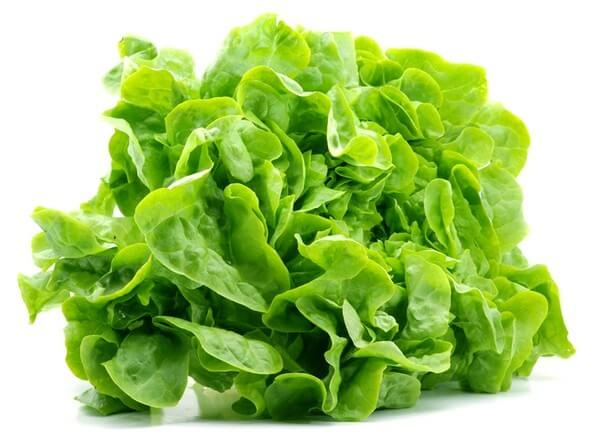 Салат листовой: ТОП-9 причин для употребления
