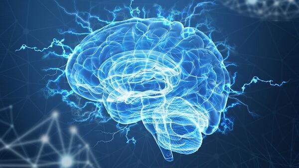 Тренировка мозга: как спорт влияет на его работу?