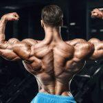 Упражнения для спины со штангой: список самых эффективных