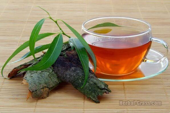 Чай с ивой